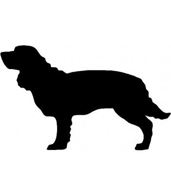 Dog Silhouette Wall Art Magnetic Memo: American Water Spaniel