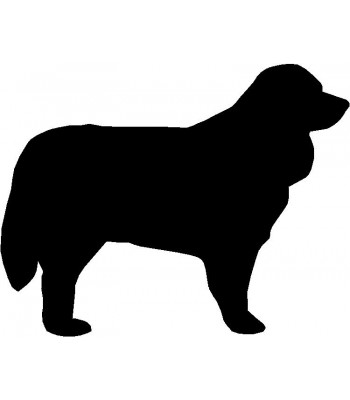 Dog Silhouette Wall Art Magnetic Memo: Bernese Mountain Dog