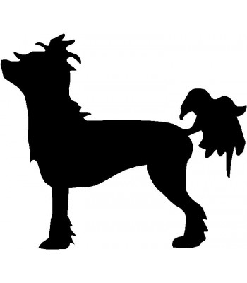 Dog Silhouette Wall Art Magnetic Memo: Chinese Crested
