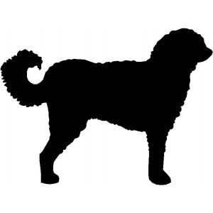 Dog Silhouette Wall Art Magnetic Memo: Labradoodle