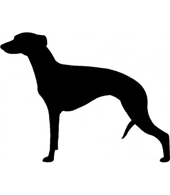 Dog Silhouette Wall Art Magnetic Memo: Whippet