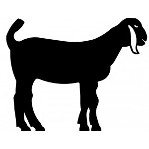Nubian Goat #02 Silhouette Wall Art Magnetic Memo