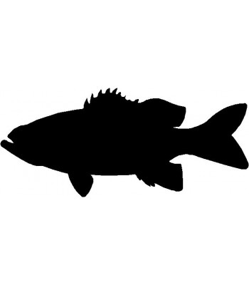 Bass Fish Silhouette Wall Art Magnetic Memo Board