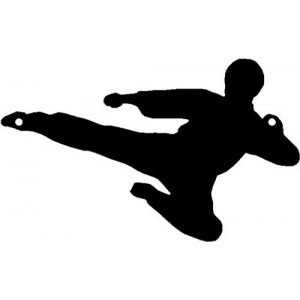 Karate Flying Side Kick - Sport Silhouettes Wall Art