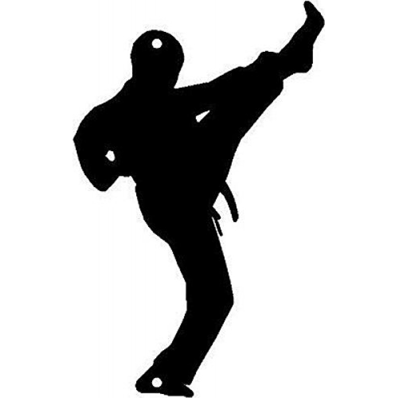 Karate Front Kick Sport Wall Decor Art