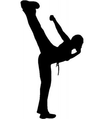 Karate High Side Kick - Sport Silhouettes Wall Art
