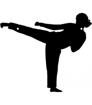 Karate Side Thrust Kick - Sport Silhouettes Wall Art
